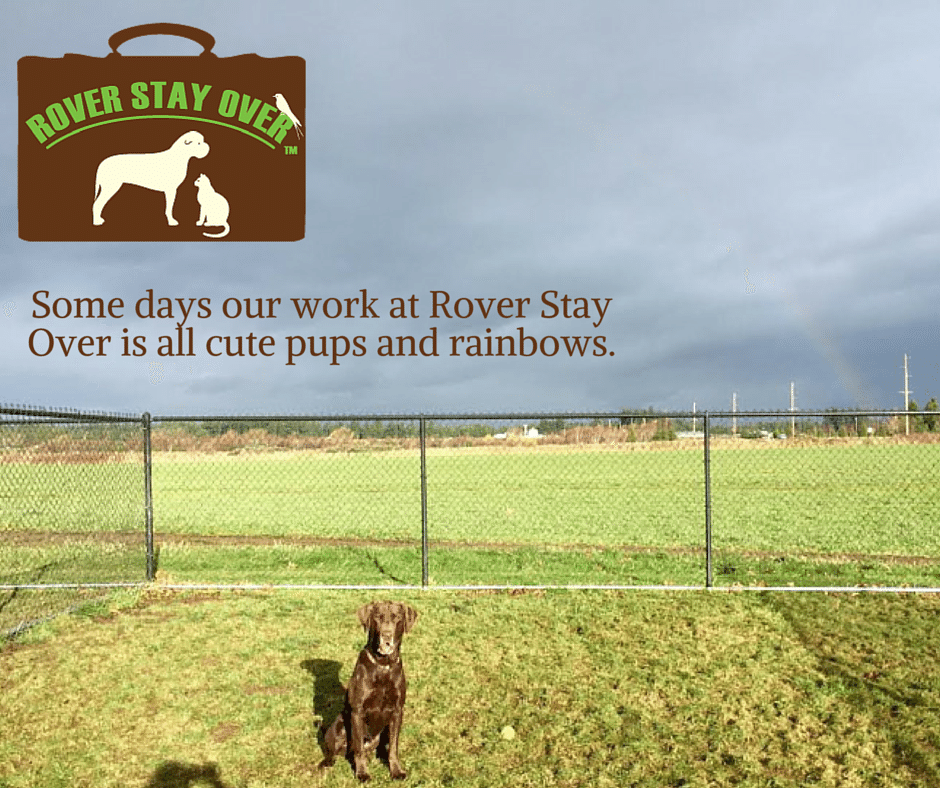 Cute dogs and rainbows-Rover
